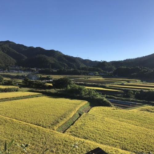 信州四賀は、秋真っ盛り! 2021.09.20